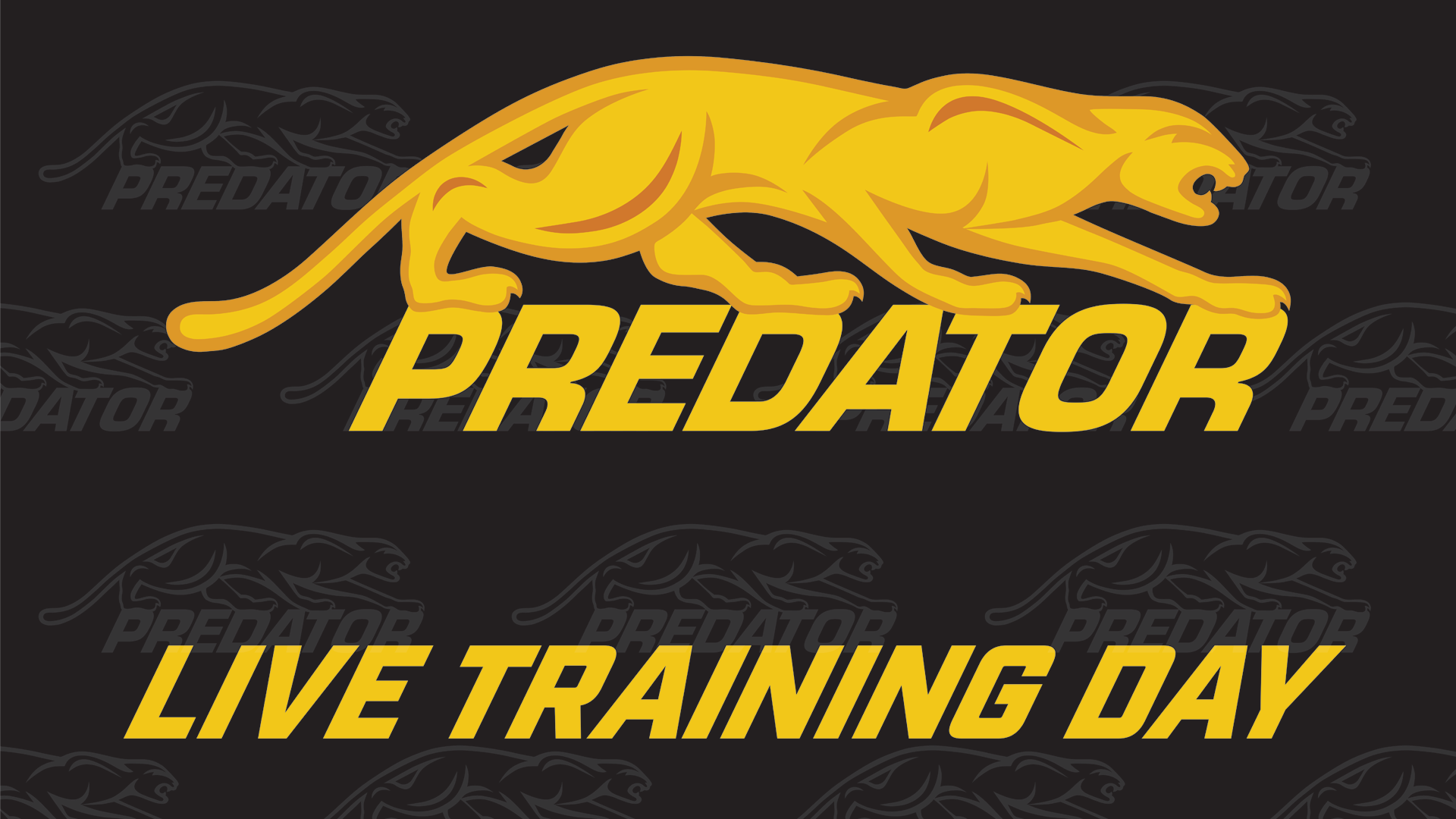 PREDATOR LIVE TRAINING DAY TO BRING FANS UNIQUE INSIGHT AHEAD OF PARTYPOKER MOSCONI CUP